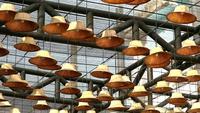 Sombreros decorando el techo
