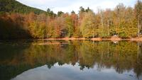 Prachtig meer in het Yedigoller National Park in de herfst