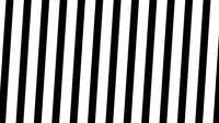 Transition vidéo de mouvement avec des lignes blanches et noires.