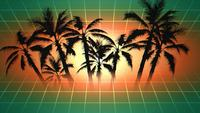 Palms and sunset with grid