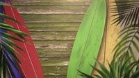 Gros plan des planches de surf