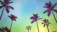 Sunrise tropisch landschap