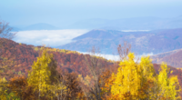 Herbstiger nebliger Morgen in den Bergen