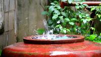 Rain drops in big water jar