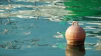 A Buoy in the Sea