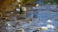 Contaminación del agua desperdiciada