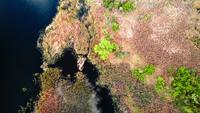 Wildlife van Oekraïne, eilanden aan de rivier de Dnjepr