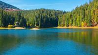 Lac de montagne d'automne avec des arbres colorés dans la forêt