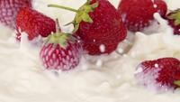 Fresas maduras cayendo en la leche