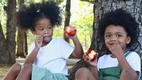 Söt svart pojke och flicka som äter ett äpple