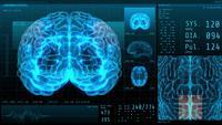 Cérebro 3D e sinais vitais com exibição de neurologia de dados estatísticos
