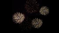Many fireworks in black background.