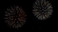 De nombreux feux d'artifice colorés clignotants en événement incroyable avec un fond noir