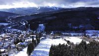 Besneeuwde bergen met een bos in 4 K